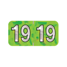 19-HLYM | 2019 Lime Holographic Year Labels Size 3/4H x 1-1/2W Laminated 500/Box