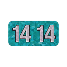 14-HAYM | 2014 Aqua Holographic Year Labels Size 3/4H x 1-1/2W Laminated 500/Box