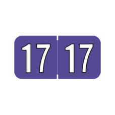 17-L9107 | Purple/Black 17 Amerifle Year Labels Size 3/4H x 1-1/2W Laminated 500/Box