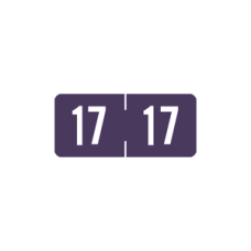 17-TP12 | Purple 17 Tab Products Year Labels TP12 Size 1/2H x 1-1/8W Vinyl 500/Box