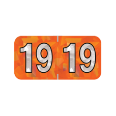 19-HOYM | 2019 Orange Holographic Year Labels Size 3/4H x 1-1/2W Laminated 500/Box