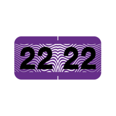 22-CF34 | Purple - Black 2022 Control-O-Fax Year Labels Size 3/4 x 1-1/2 Laminated 500/Box
