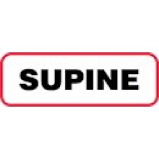 XSUP | SUPINE Label, Sz 1/2 X 1-1/2, Printed Black with Red Border, 1000/bx